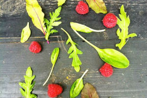 Antioxidanter Og Kræft