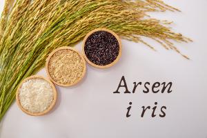 RIS – Sådan Gør Du! Ris Arsen