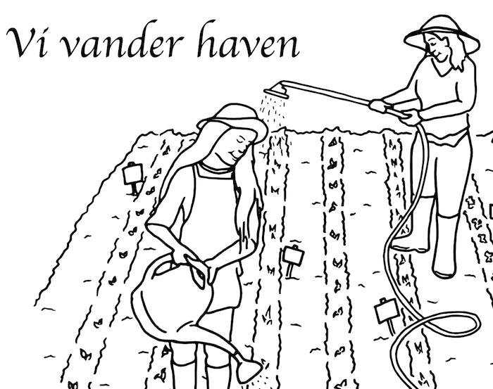 vander1