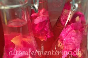 Fermentere