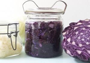 Probiotika – Nyt Tema Med Probiotisk Problemknuser