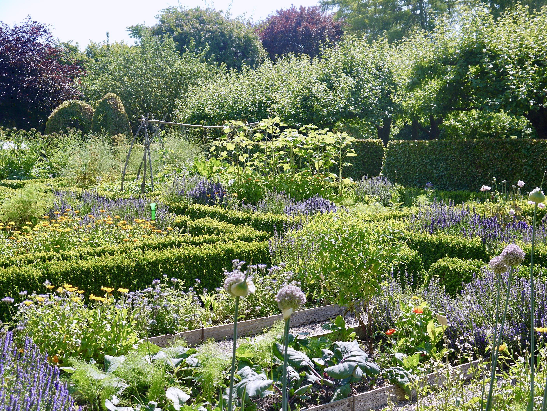 økologisk have