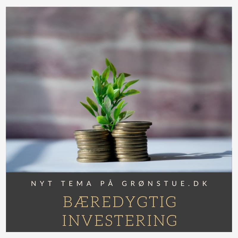 Bæredygtig Investering