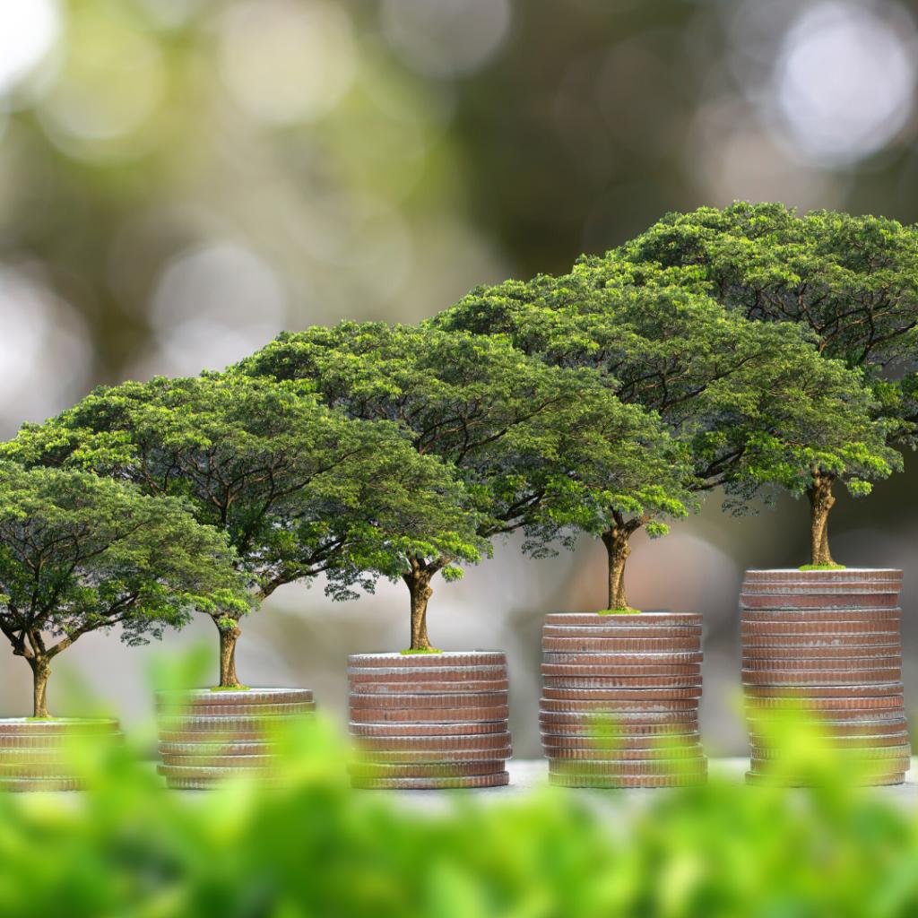 bæredygtig pension